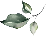 Illustrative leaf right